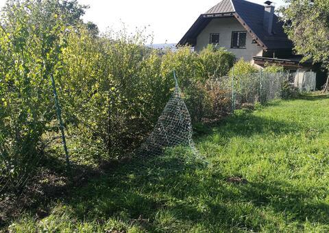 Reparaturarbeiten in 2102 Bisamberg Niederösterreich 01