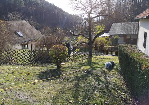 Maschendrahtzaun in 2393 Sittendorf  Niederösterreich 06